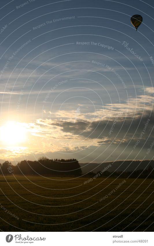 Der Sonne entgegen. Natur Himmel Baum Sonne Wolken Luft fliegen Luftverkehr Luftballon
