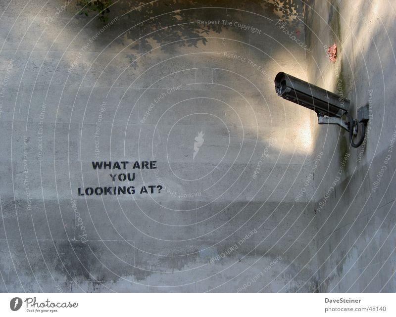London CCTV Wand Mauer offen Fotokamera beobachten England Überwachung Überwachungskamera Hyde Park