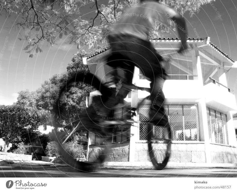 Biker Kind Himmel Baum Fahrrad Platz Mexiko Zicklein