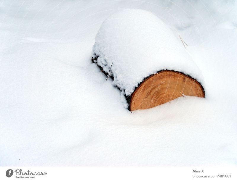 Schneesturm Winter Schneefall Holz kalt Baumstamm Brennholz Baum fällen Forstwirtschaft Jahresringe Schneedecke Winterwald Farbfoto Außenaufnahme Menschenleer