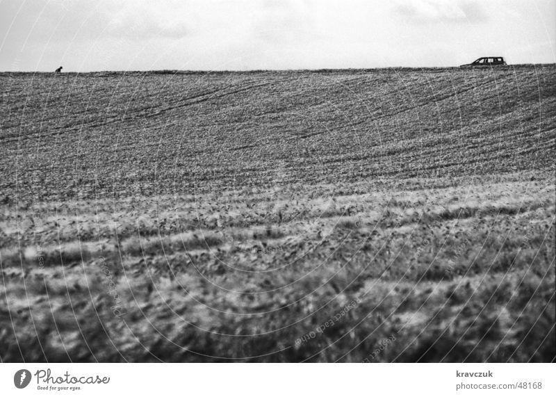 Auto sucht Herrchen Himmel Wolken Einsamkeit PKW Feld Bodenbelag Getreide Hügel Landwirtschaft horizontal gebeugt Querformat Bodenerhebung