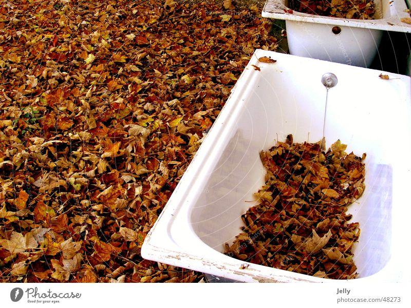 herbstbad Badewanne Blatt Herbst weiß braun Bodenbelag Natur