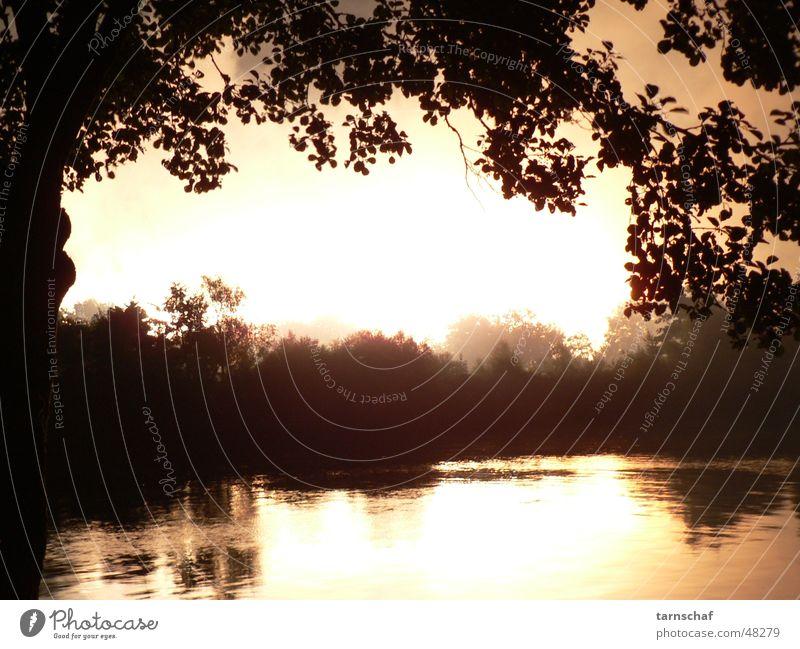 Explosion Himmel Baum ruhig hell Horizont Fluss bedrohlich grell