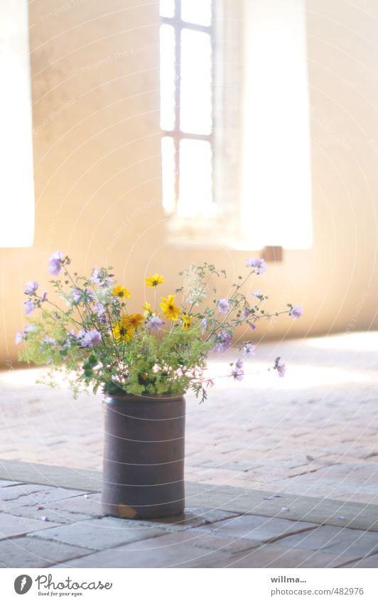 ort der besinnung ruhig Fenster kalt Gebäude hell Zufriedenheit nachdenklich Hoffnung Glaube zart Blumenstrauß Meditation Vase trösten Kloster Steinboden