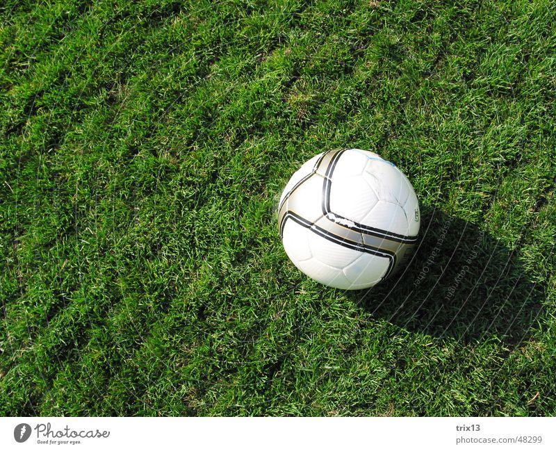 fussball Fußballplatz Wiese rund Linie grün gestreift weiß Rasen Ball Schatten Bodenbelag Sport ruhig verrückt