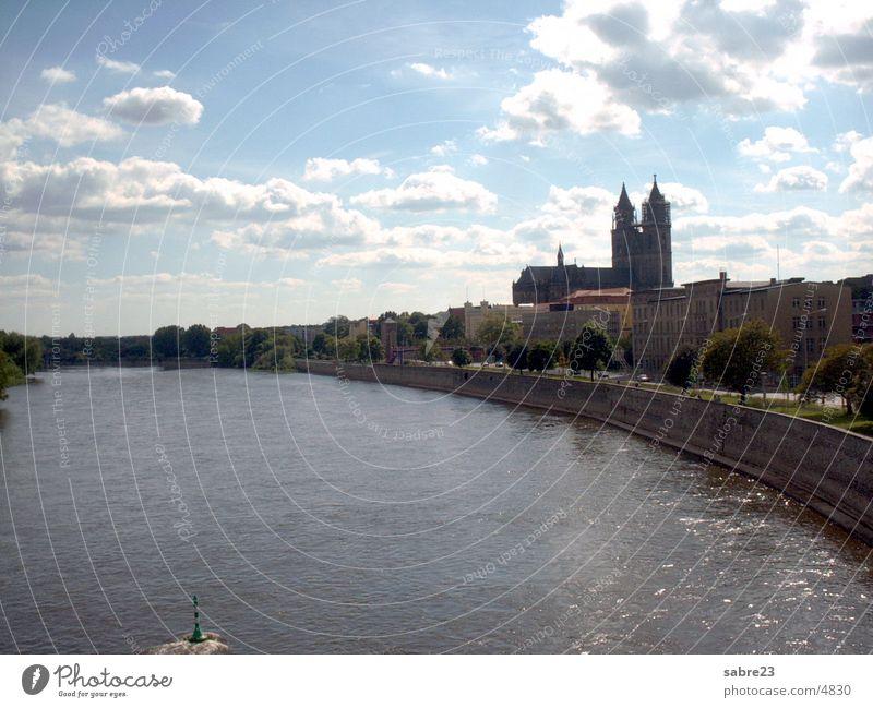 elbe in magdeburg mit dom Wasser Stadt Fluss Sachsen-Anhalt Dom Elbe Magdeburg