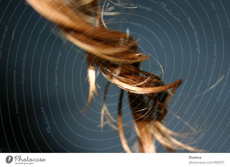 Lockenzieher Haare & Frisuren nass feucht Spirale gedreht gewaschen hellbraun