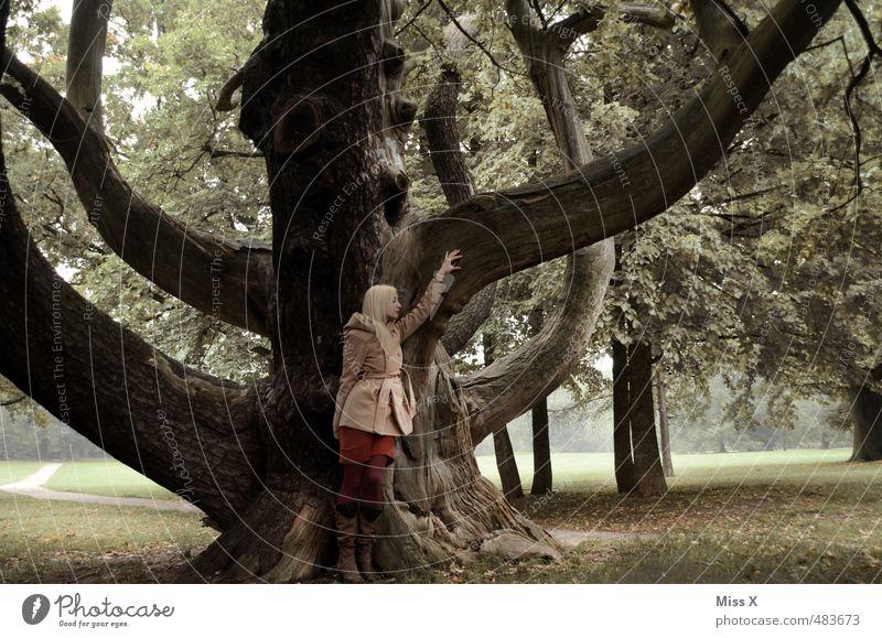 Krake II Mensch feminin Frau Erwachsene 1 18-30 Jahre Jugendliche Natur Baum Park Wald Mantel blond alt gigantisch Gefühle Stimmung Kraft Willensstärke Macht