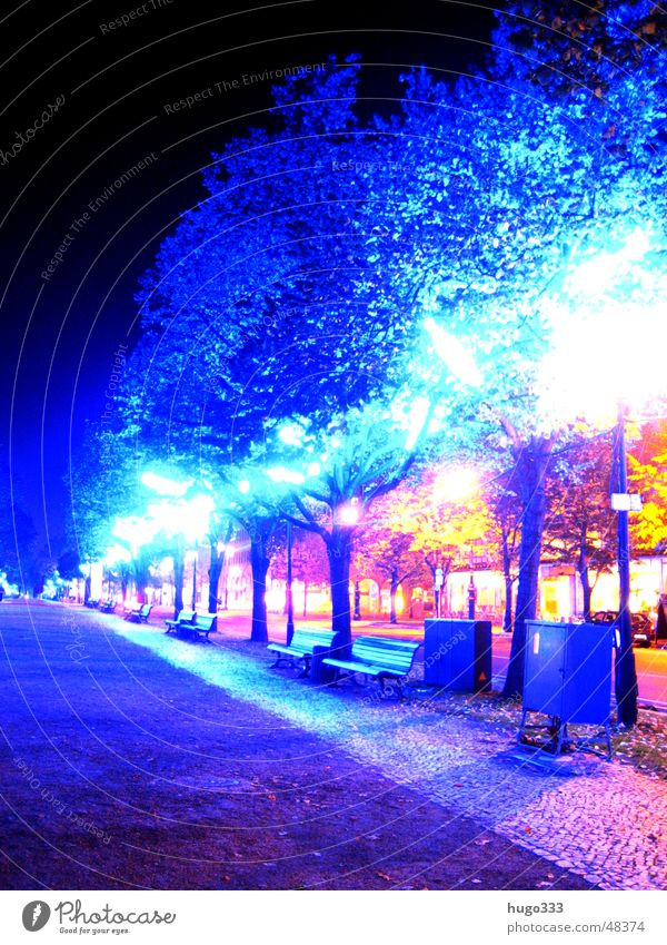 Blaue Bäume Baum blau rot Blatt Straße Berlin Beleuchtung Bank Neonlicht unheimlich glühen spukhaft Unter den Linden