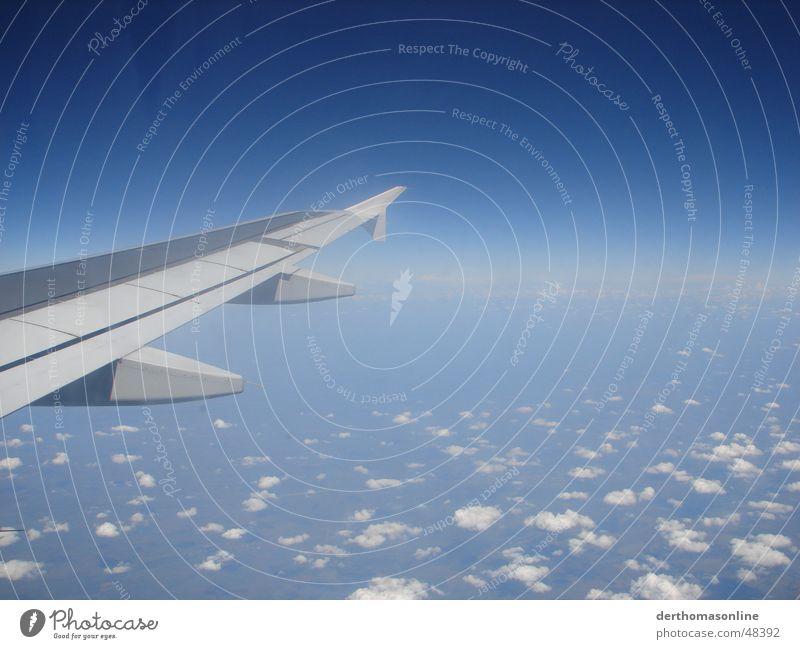 Am anderen Ende der Welt Himmel blau Freude Ferien & Urlaub & Reisen Wolken Ferne Freiheit Deutschland Flugzeug Wind groß hoch Geschwindigkeit Ausflug