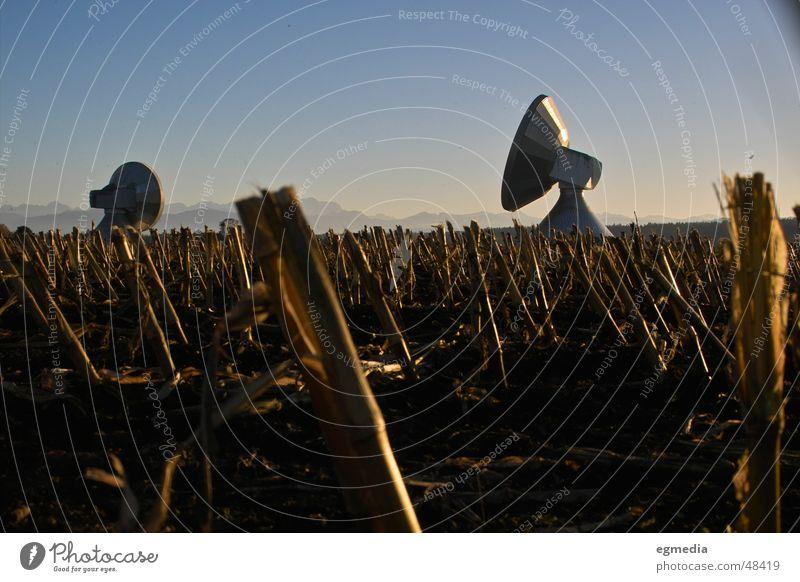 erde an alle... Natur Landschaft Ferne Freiheit Deutschland Ernte Bayern Antenne Stoppel Satellitenantenne Funktechnik Satellit Raumfahrt Maisfeld Radioteleskop Raisting