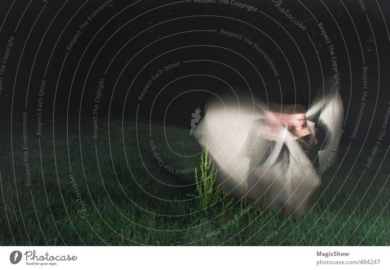 Engel in der Nacht feminin Frau Erwachsene 1 Mensch Pflanze Gras Tanzen elegant fantastisch weich grün Schleier Elfe Fee heilig Tragfläche dunkel