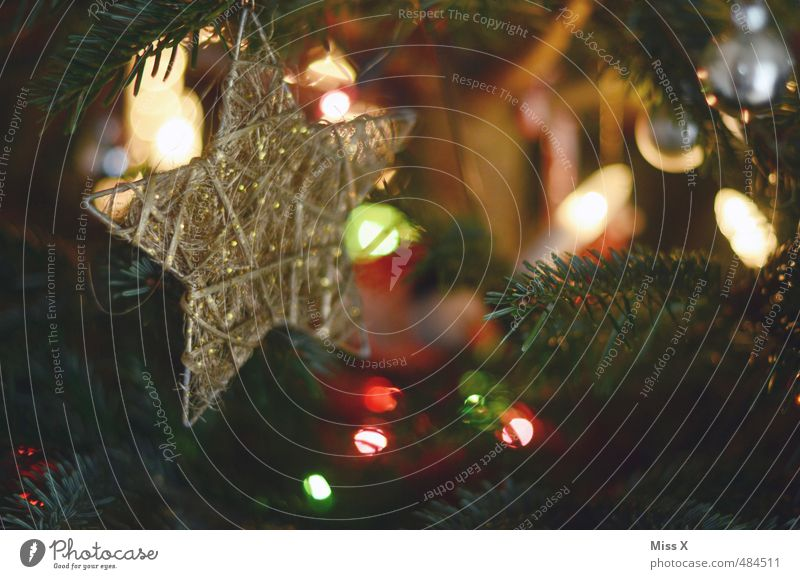 Weihnachtlich Weihnachten & Advent Baum Feste & Feiern glänzend gold leuchten Stern (Symbol) Weihnachtsbaum Christbaumkugel Schmuckanhänger Tannenzweig