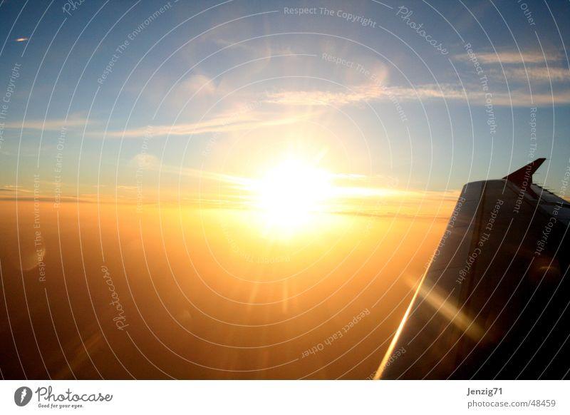 Airplane - Sunset Sonnenuntergang Sonnenaufgang Flugzeug Ferien & Urlaub & Reisen Wolken fliegen Düsenflugzeug Himmel