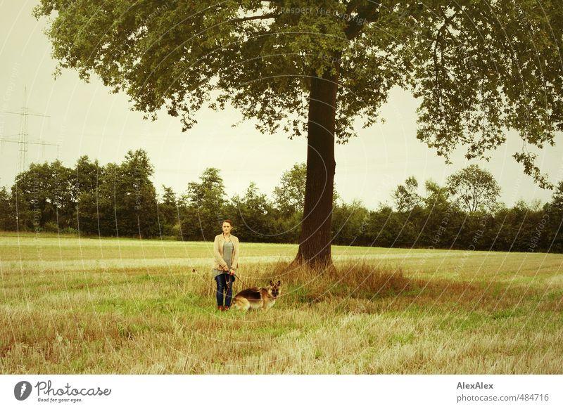 Mädchen mit Hund Jugendliche schön Erholung Junge Frau Erwachsene 18-30 Jahre feminin Glück natürlich Zusammensein Feld Idylle Zufriedenheit frei warten stehen