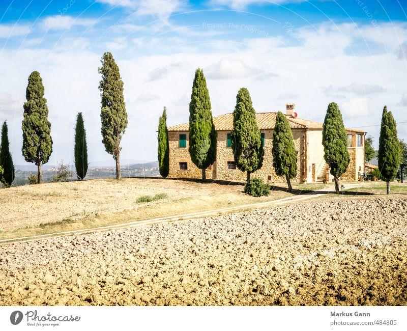 Landschaft in der Toskana Himmel Natur Ferien & Urlaub & Reisen Pflanze schön Sommer Baum ruhig Haus Hintergrundbild hell Feld Idylle Tourismus Europa