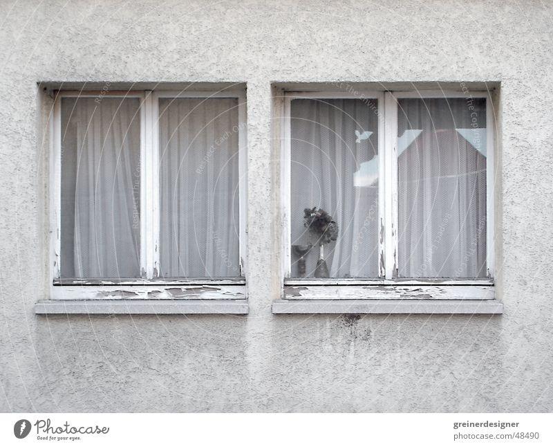 Fenster trist Nachbar Gebäudeteil Fensterbrett Dorf Trauer Provinz Arme schäbig dreckige fassade auf dem land Traurigkeit