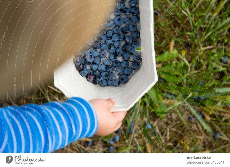 sammler & sammler Kind Hand Mädchen Freude Wiese Junge Essen Garten Lebensmittel Frucht Kindheit Arme Landwirtschaft Kleinkind Bioprodukte Schalen & Schüsseln