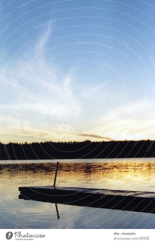 sonnenuntergang I Sonnenuntergang Steg See Meer Wald Stimmung Wasser orange Himmel