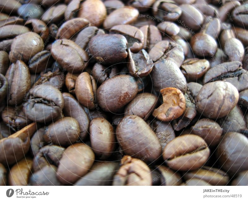 Kaffeebohnen schwarz braun Café Heißgetränk Bohnen Geschmackssinn Erholung Koffein Gelassenheit Geruch aromatisch braune perlen röstung Freude