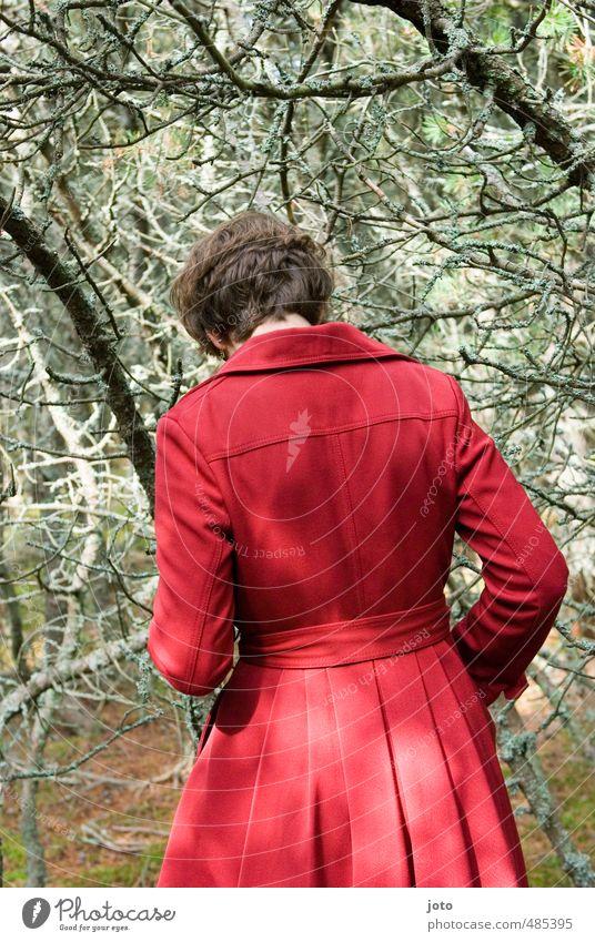 waldgang Junge Frau Jugendliche Erwachsene 1 Mensch Natur Herbst Wald Mode Mantel bedrohlich dunkel gruselig rot vernünftig Einsamkeit geheimnisvoll Neugier