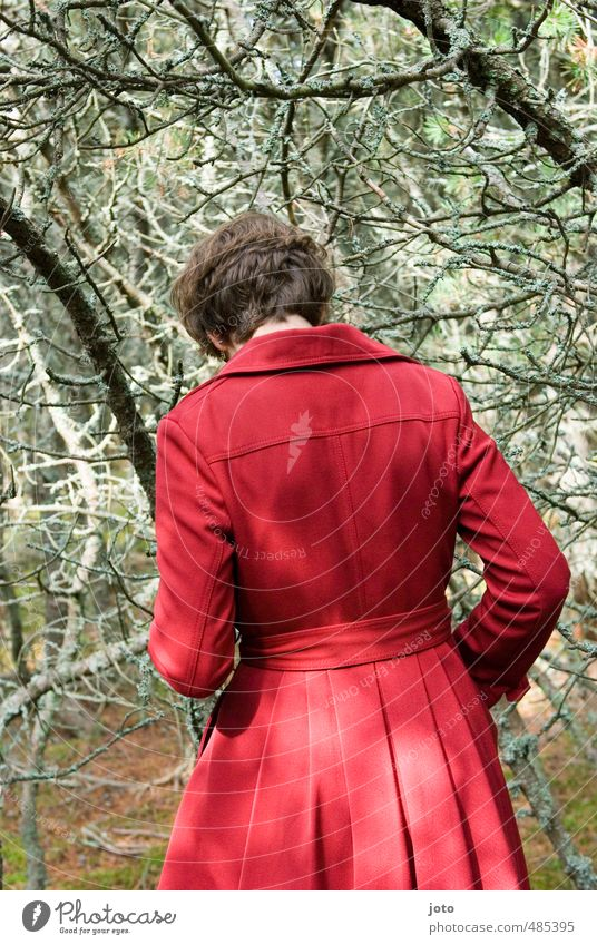 waldgang Mensch Frau Natur Jugendliche rot Einsamkeit Junge Frau Wald Erwachsene dunkel Herbst Wege & Pfade Mode bedrohlich Spaziergang Neugier