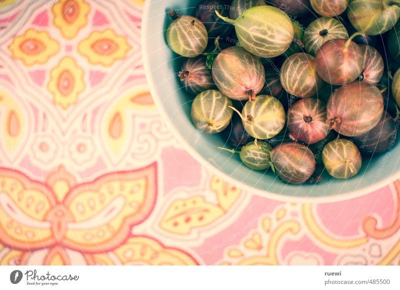 Stachelbeeren Natur Pflanze Sommer gelb Gesunde Ernährung grau Essen Gesundheit rosa Lebensmittel Frucht frisch verrückt genießen süß