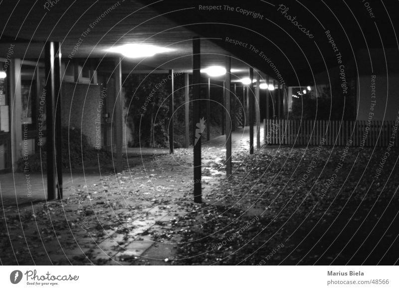 Licht im Gang... Nacht Blatt schwarz weiß dunkel Beleuchtung Lampe Herbst Trauer eng Unterdrückung Außenaufnahme Langzeitbelichtung Schwarzweißfoto Schulgebäude