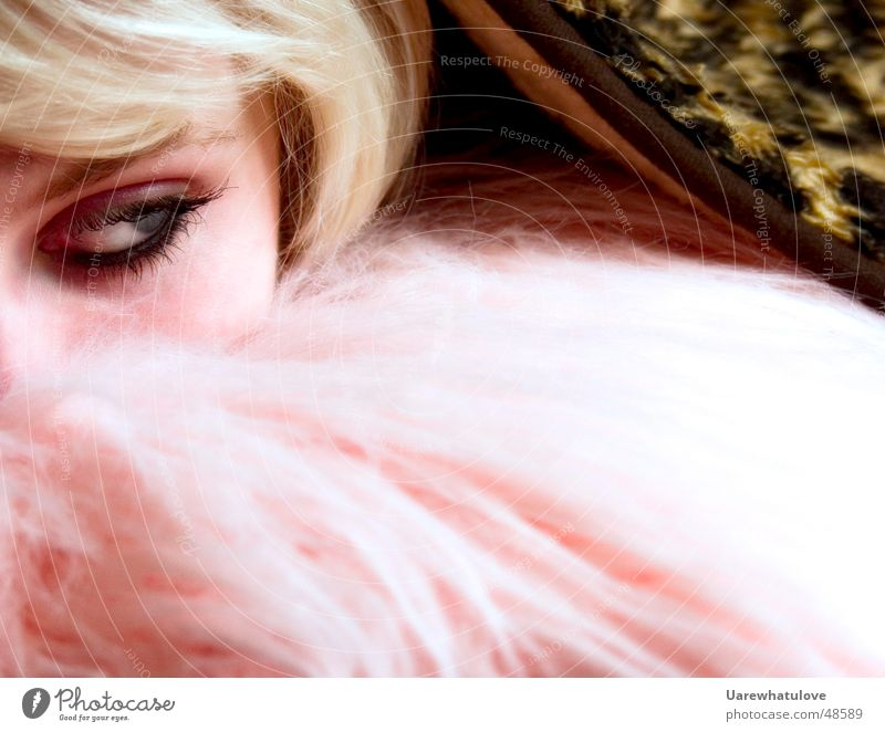 Rest your eyes layed down Kissen blond Leopard rosa Wimpern rechts Frau Auge Haare & Frisuren Decke verstecken Detailaufnahme Gesicht Kopf