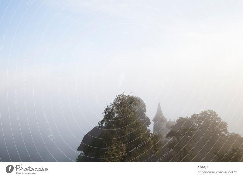 Sage Umwelt Natur Herbst Nebel Hügel Burg oder Schloss Sehenswürdigkeit alt dunkel Märchenschloss Farbfoto Gedeckte Farben Außenaufnahme Menschenleer