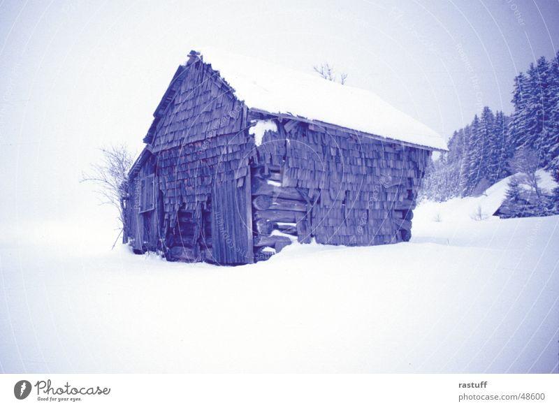stadel1 weiß Baum blau Winter ruhig Einsamkeit Wald kalt Schnee Holz Traurigkeit Frieden verfallen Hütte Holzbrett Scheune