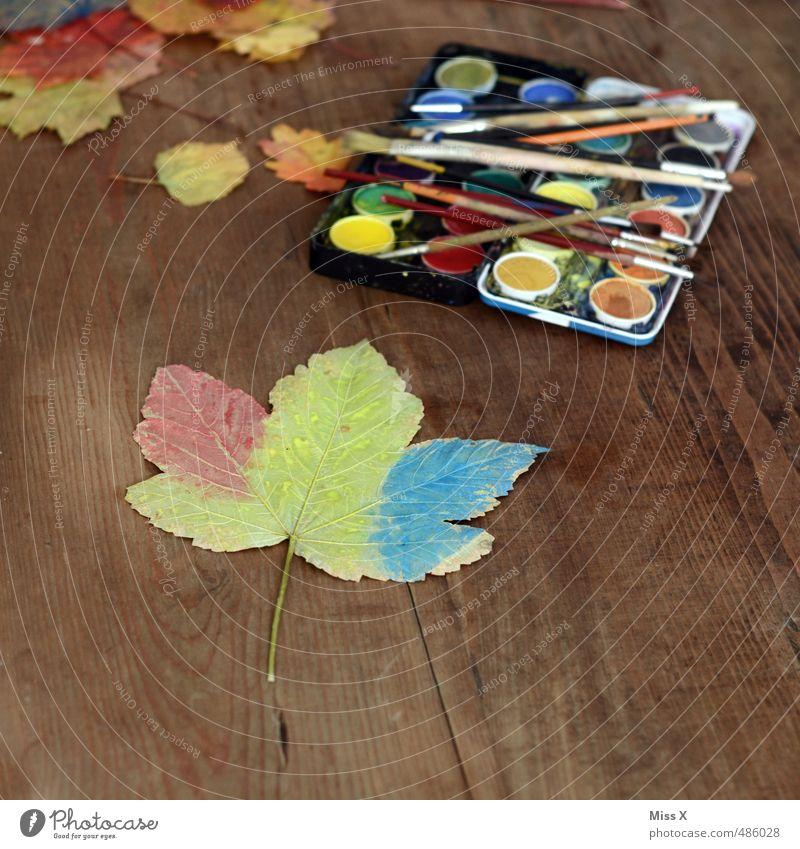 Herbstfärbung Farbe Blatt Farbstoff Spielen Kunst Freizeit & Hobby Dekoration & Verzierung Kreativität malen Herbstlaub herbstlich Ahornblatt Pinsel Basteln