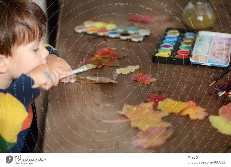 Konzentriert Mensch Kind Blatt Herbst Spielen Freizeit & Hobby Kindheit Tisch niedlich Kreativität malen Konzentration Kleinkind Herbstlaub Ahornblatt Pinsel