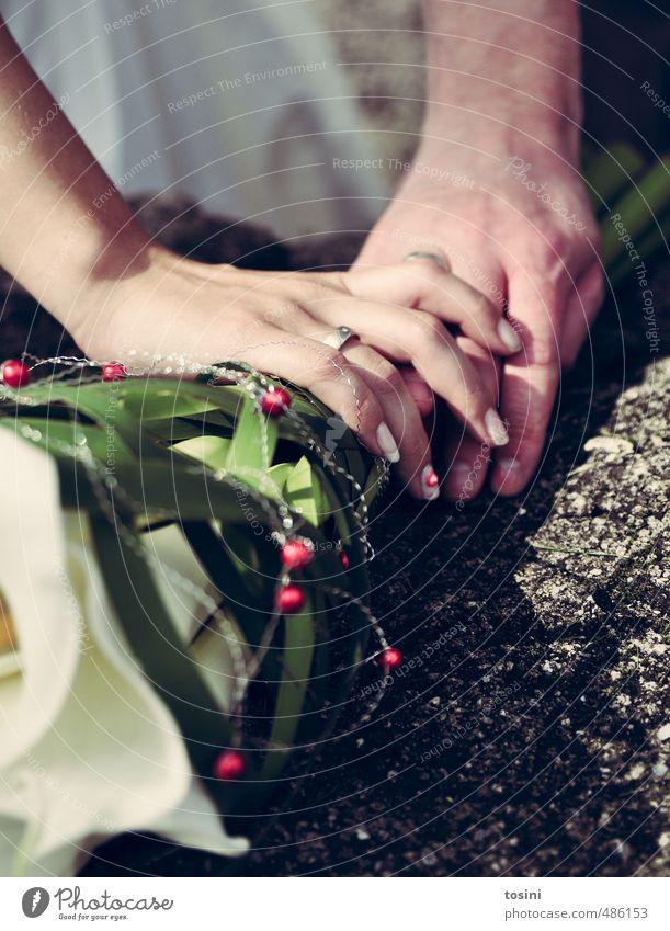 berührt Paar Partner Hand Finger Glück Lebensfreude Ehepaar Hochzeit Kreis Ehering Blumenstrauß hochzeitsstrauß berühren genießen Entscheidung Höhepunkt