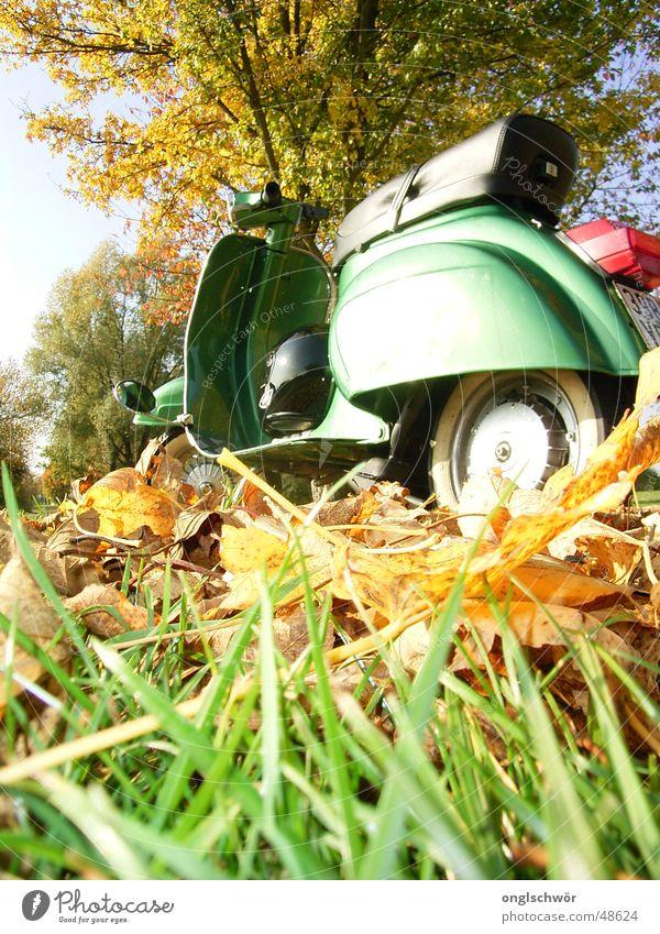 Paul alias Vespa V50 N Special 1976 Himmel Baum grün Freude Blatt Arbeit & Erwerbstätigkeit Herbst Park Geschwindigkeit Romantik Italien Kleinmotorrad Oldtimer