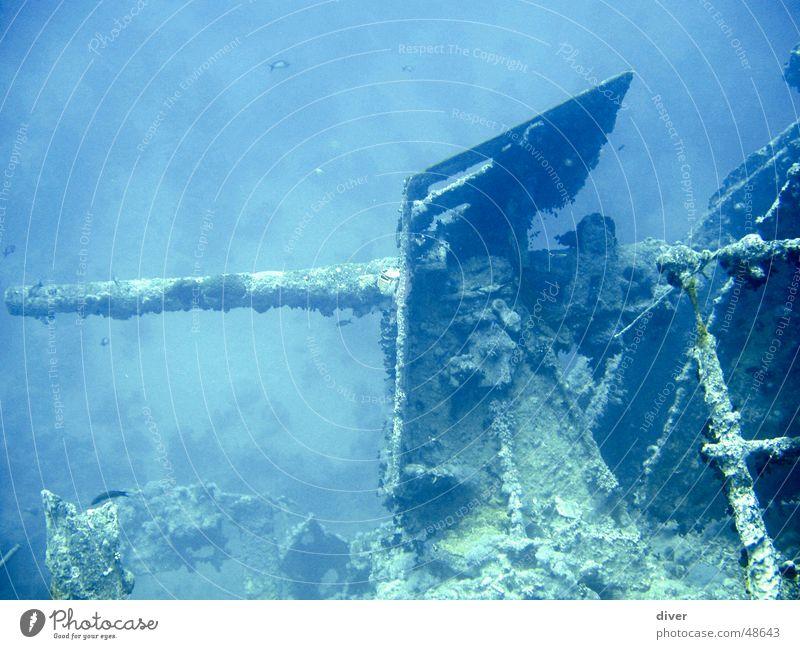 Bordgeschütz der Thistlegorm Wasserfahrzeug tauchen Krieg Unterwasseraufnahme Kanonen Marine Schiffswrack Geschütz Rotes Meer