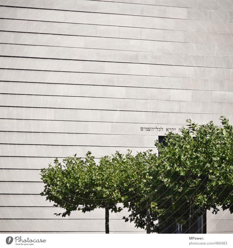 ohne titel Bauwerk Gebäude Architektur Sehenswürdigkeit Denkmal hell historisch Religion & Glaube Synagoge Gotteshäuser Baumkrone Laubbaum Beton Stein versetzt