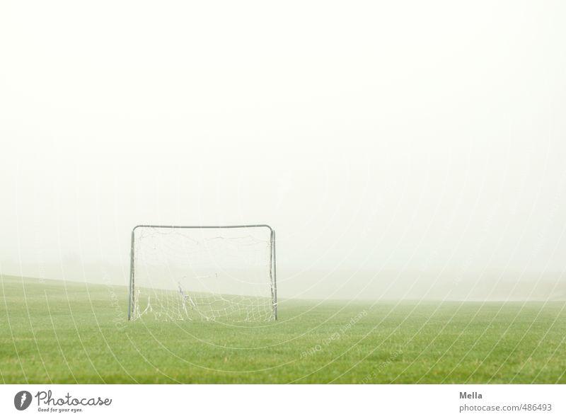 Anpfiff Sport Ballsport Tor Sportstätten Fußballplatz Umwelt Nebel Gras Wiese einfach hell Freizeit & Hobby Menschenleer Fußballtor Spielfeld Spielen Farbfoto