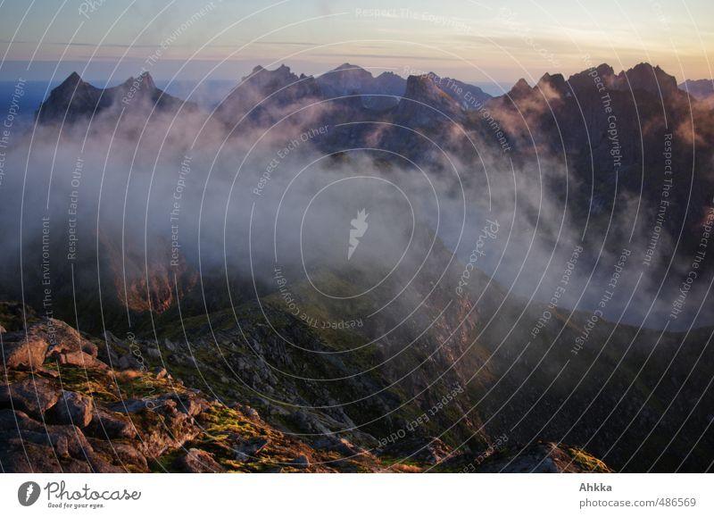 Lofoten XIII Natur Ferien & Urlaub & Reisen Erholung Landschaft ruhig Wolken Ferne Berge u. Gebirge Freiheit Denken Zeit träumen Stimmung Zufriedenheit