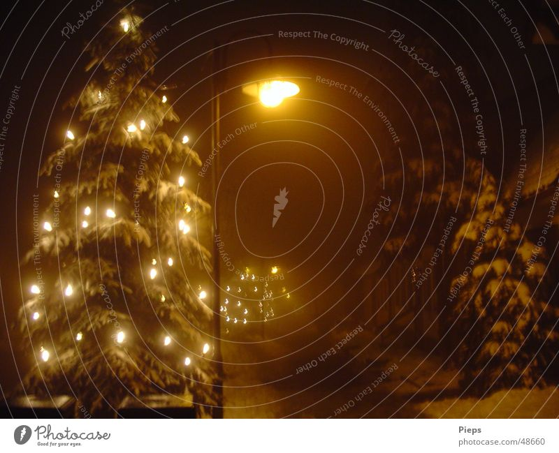 A Spooky Dream Of Christmas Weihnachten & Advent Winter ruhig Straße dunkel Schnee Nebel leuchten Weihnachtsbaum Laterne frieren Gasse Dezember Reinheit