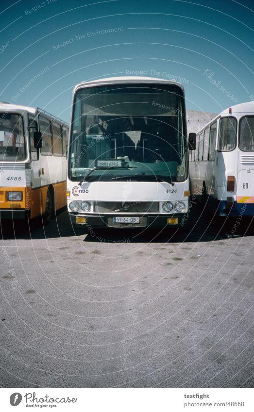 bus Busbahnhof Portugal Sommer Teer KFZ Himmel buses bus terminal Bahnhof Sonne Bodenbelag blau Schönes Wetter sky sun