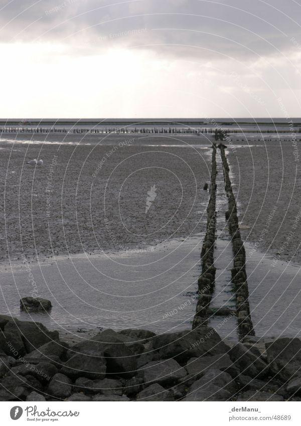 Triste Schönheit kalt schlammig Meer zurück Ebbe schön Ecke grau Horizont Möwe Deich Wellen Geröll trist einfarbig Mauer einheitlich Ferne Küste schwarz weiß