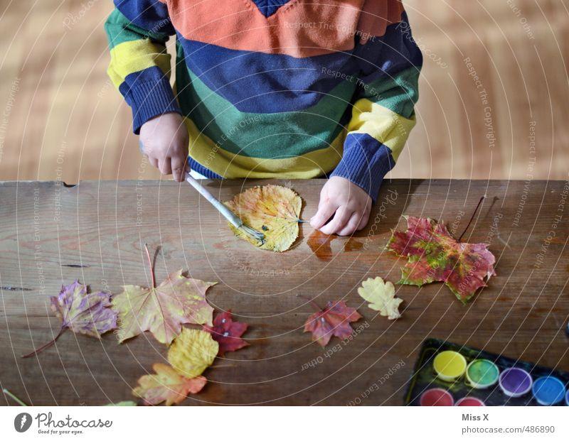 Herbstspaß Mensch Kind Farbe Freude Blatt Gefühle Herbst Farbstoff Spielen Stimmung Freizeit & Hobby Kindheit Kreativität malen Kleinkind Herbstlaub