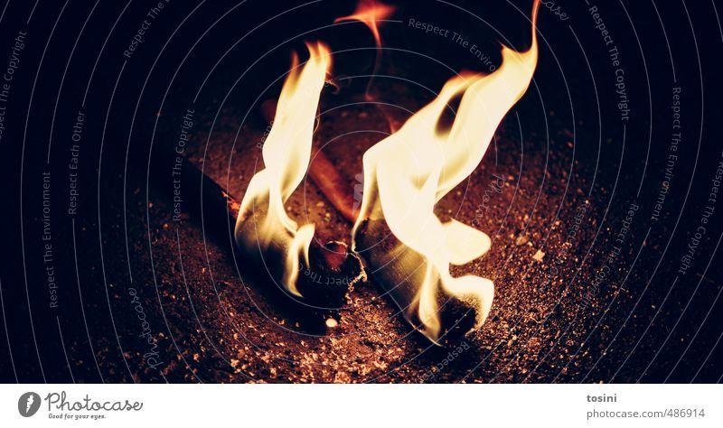 fire Wärme Gefühle Lampe hell Stimmung Urelemente bedrohlich Warmherzigkeit Brand Feuer Romantik Flamme Erschöpfung Feuerstelle Fackel ausgebrannt