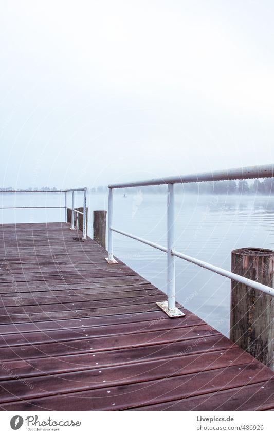 Müritzarm Ferien & Urlaub & Reisen Umwelt Natur Landschaft Wasser Himmel Wolken Sonnenaufgang Sonnenuntergang Sonnenlicht Herbst Nebel Pflanze Baum Seeufer grau