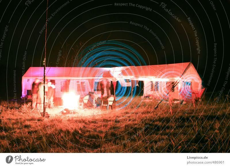 Wiesenmeer Mensch Mann Erwachsene 1 30-45 Jahre Kunst Maler Umwelt Natur Landschaft Pflanze Gras Feld drehen leuchten hell retro rund violett orange rosa