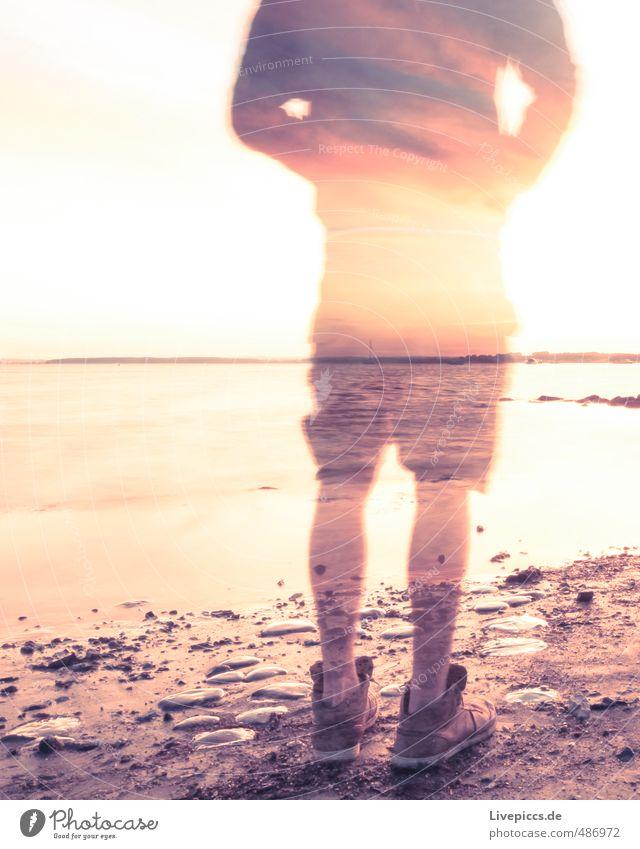 Mr.Wade Mensch maskulin Mann Erwachsene 1 30-45 Jahre Umwelt Natur Landschaft Wasser Himmel Wolken Sonne Sonnenaufgang Sonnenuntergang Sonnenlicht Sommer