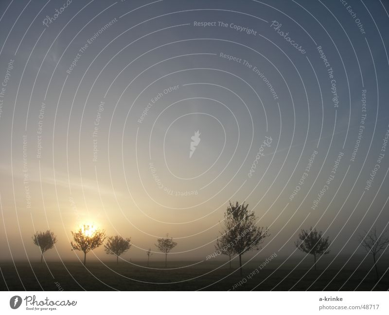 Nebelstrahl Himmel Baum Sonne blau Ferne kalt Bayern
