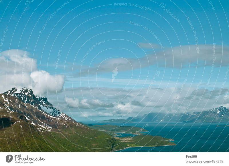 Lofoten Himmel Natur blau grün Wasser weiß Pflanze Sommer Meer Erholung Einsamkeit Landschaft ruhig Wolken Tier kalt
