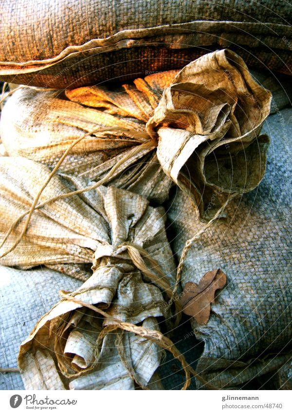 Alte Säcke bei Sonnenuntergang dreckig Baustelle Herbst Blatt untergehen Sack eng erdrücken eingeengt nah Haufen alt Sand Armut Traurigkeit